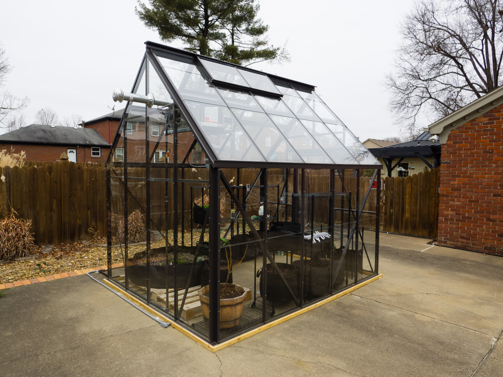 Green House 11 Jan 2015-1-2